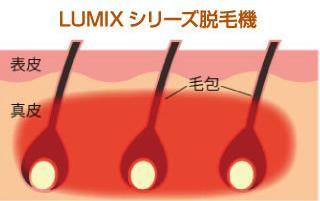 LUMIXシリーズ